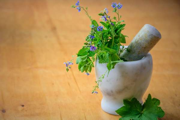 Naturalne suplementy na odporność – dlaczego są tak istotne dla prawidłowego funkcjonowania systemu?